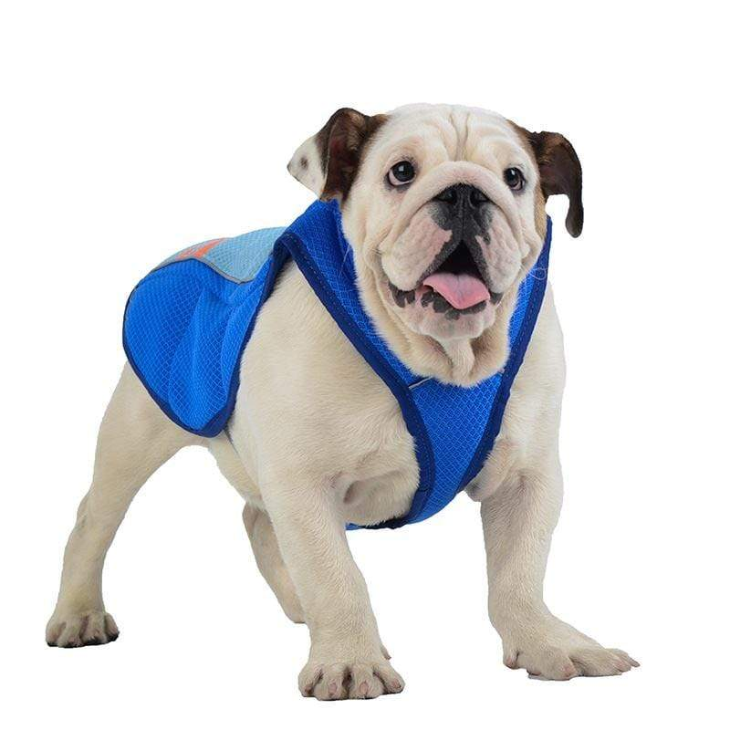 Frenchie World Shop English Bulldog Summer Cooling Vest