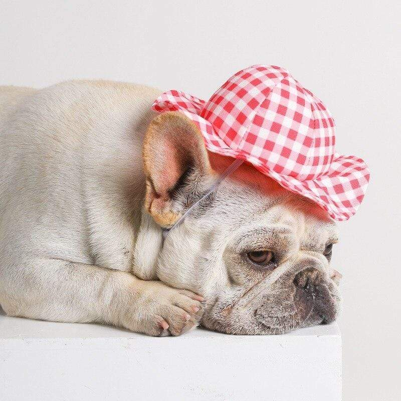 Frenchie World Shop Fashion Dog Hat for Small Medium Dogs Summer Sun-Proof Hat for Cats Plaid Dog Hats Decor Photo Taking Accessories for Pets