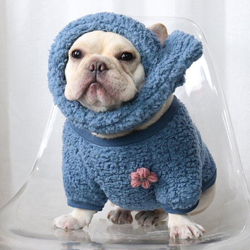 Frenchie World Shop Blue Set / XXL French Bulldog Cuddling Sweater With Matching Scarf