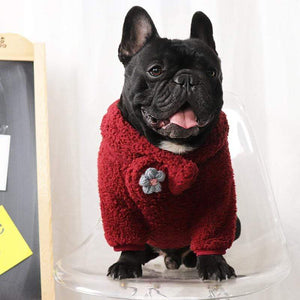 Frenchie World Shop Red Set / XL French Bulldog Cuddling Sweater With Matching Scarf