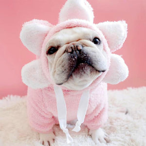Frenchie World Shop Pink / FB French Bulldog Flower Hoodie