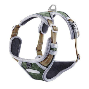 Frenchie World Shop Dark Green / S French Bulldog No-Pull Nylon Harness
