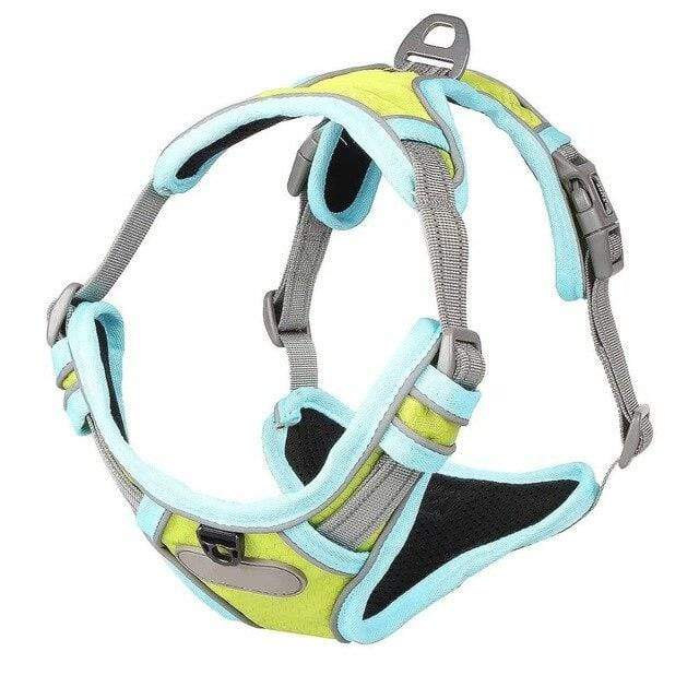 Frenchie World Shop Fluorescent green / S French Bulldog No-Pull Nylon Harness