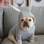 Frenchie World Shop Dog Clothing French Bulldog Rabbit Hoodie