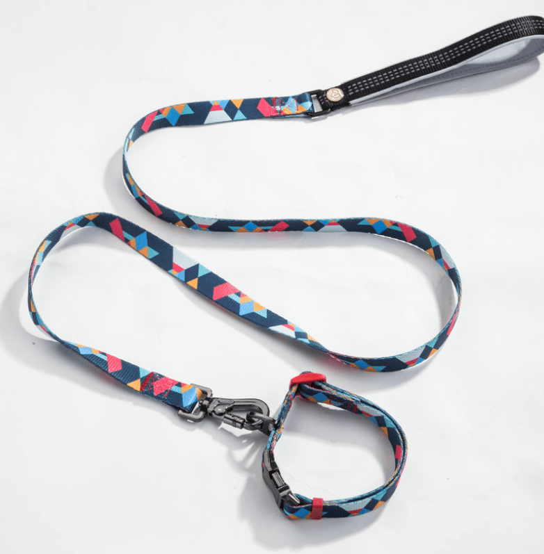 Frenchie World Shop French Bulldog Tie Collar & Leash Lead Set