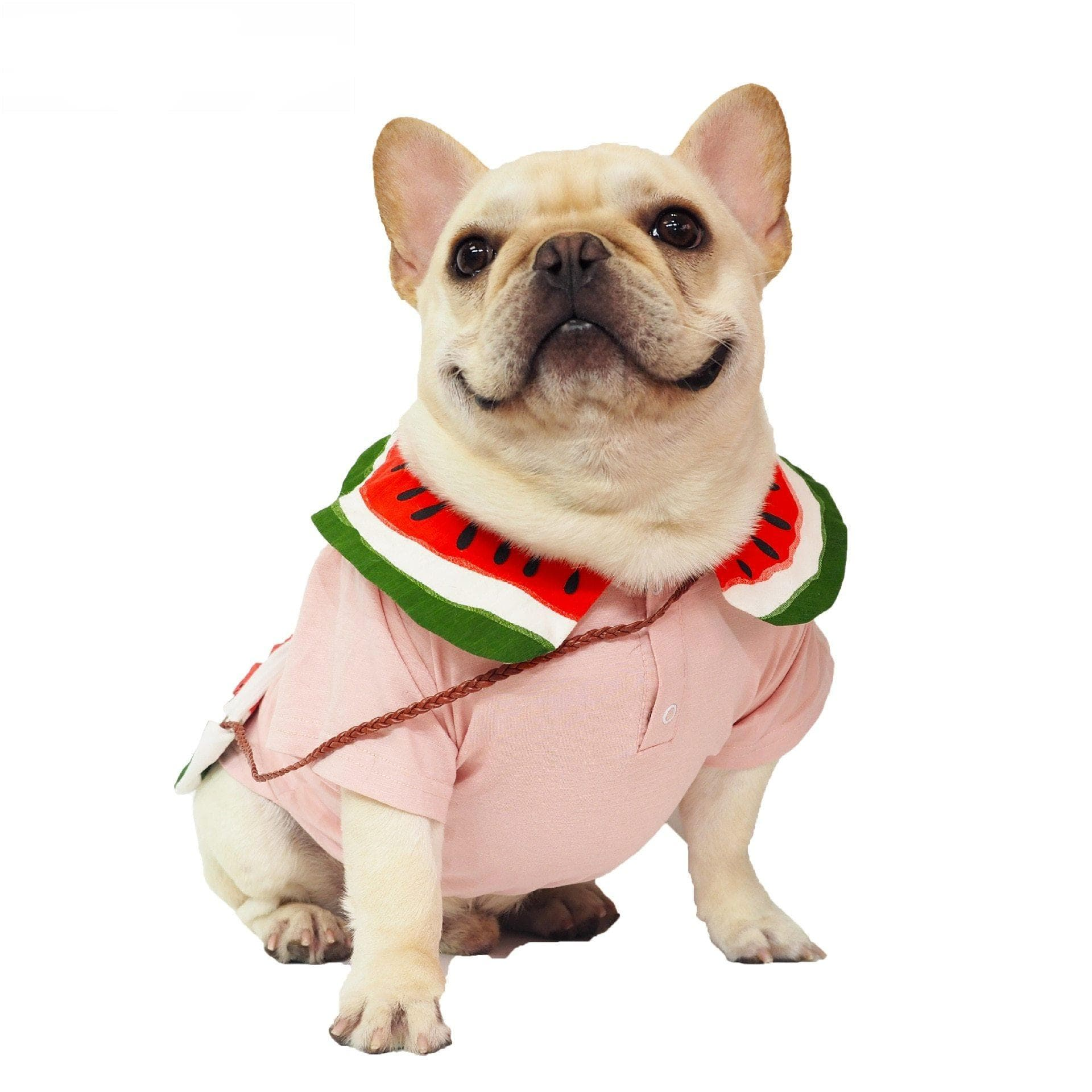 Frenchie World Shop French Bulldog Watermelon T-shirt & Bag