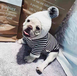 Frenchie World Shop French Bulldog Winter Warm Striped Pompom Hoodie