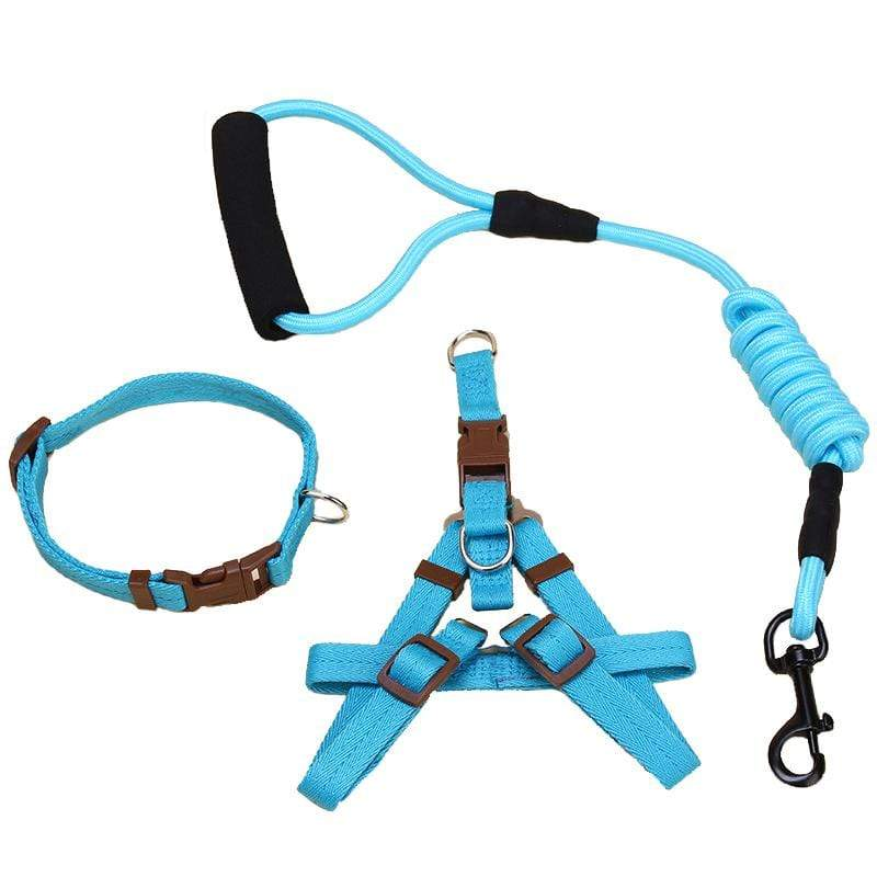 Frenchie World Shop Dog Accessories Frenchie World® Harness, Leash & Leads set