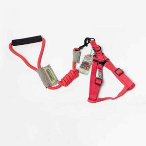 Frenchie World Shop 12 / S 7mm Frenchie World™ Orthopedic Harness