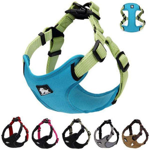 Frenchie World Shop Dog Accessories Frenchie World® Reflective protective harness