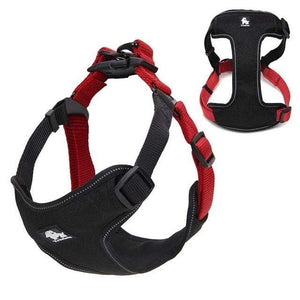 Frenchie World Shop Dog Accessories red / L Frenchie World® Reflective protective harness