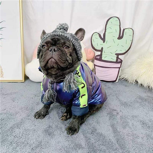 best coats for french bulldogs