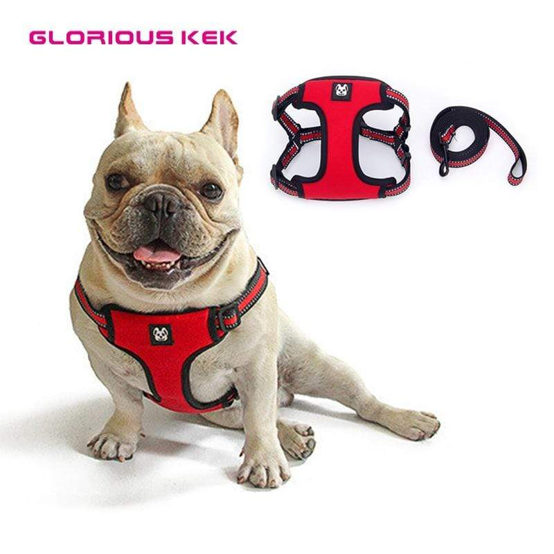 Frenchie World Shop GLORIOUS KEK Dog Harness Reflective Dog Harness and Leash Set Soft Air Padded Dog Harness Vest for Small Medium Large Puppy Lead