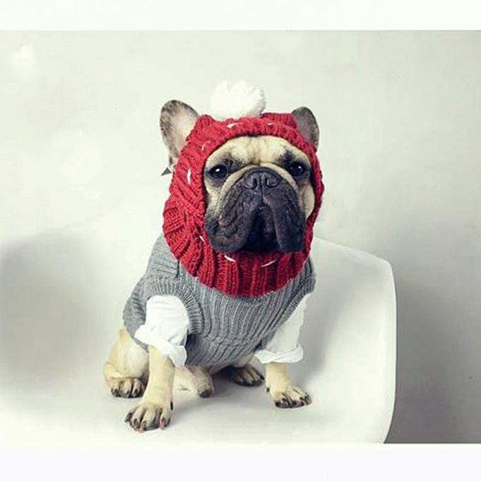 Frenchie World Shop Dog Accessories Handmade woolen Frenchie cap