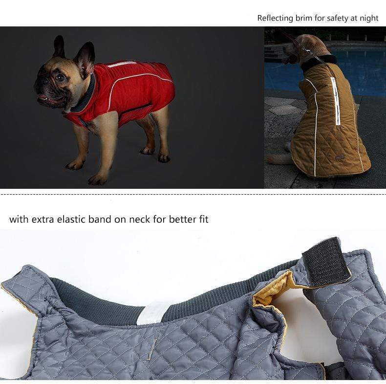 Frenchie World Shop Dog Clothing High Quality Water Repellent Dog Vest