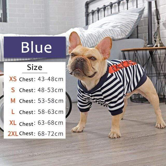 Frenchie World Shop Blue / XS HOOPET Dog Clothes Winter Warm Pet Dog Jacket Coat Puppy Chihuahua Clothing For Small Medium Dogs Puppy Outfit