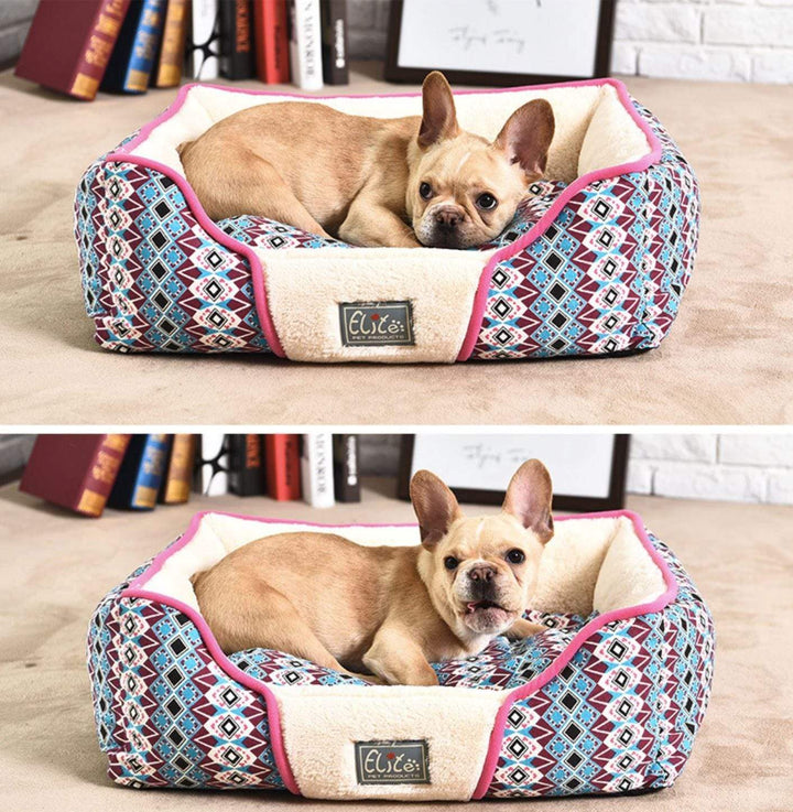 french bulldog beds