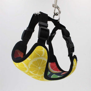 Frenchie World Shop Lemons Reversible Harness