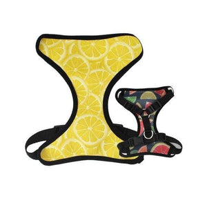 Frenchie World Shop harness only / XS(15-25cm Length) Lemons Reversible Harness