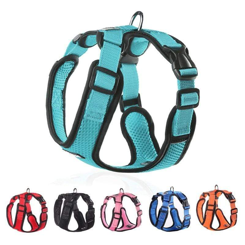 Frenchie World Shop No-pull Breathable French Bulldog Harness