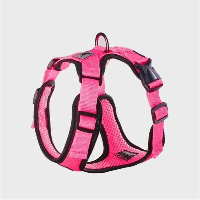 Frenchie World Shop fuchsia / S Chest 30-38cm No-pull Breathable French Bulldog Harness