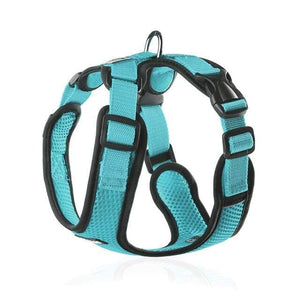 Frenchie World Shop turquoise / L Chest 48-60cm No-pull Breathable French Bulldog Harness
