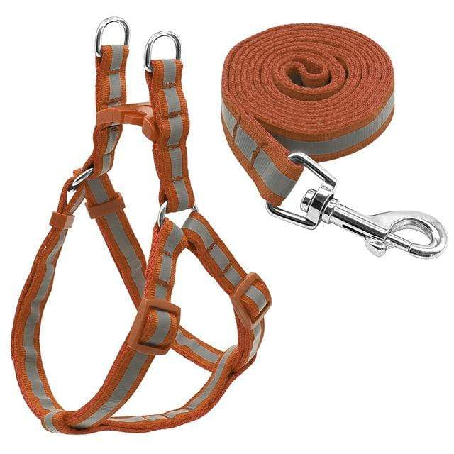 "Frenchie World Shop Dog Accessories Brown / S ""NO PULL"" Reflective Dog Harness and Leash Set"