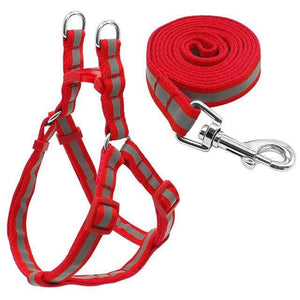 "Frenchie World Shop Dog Accessories Red / S ""NO PULL"" Reflective Dog Harness and Leash Set"