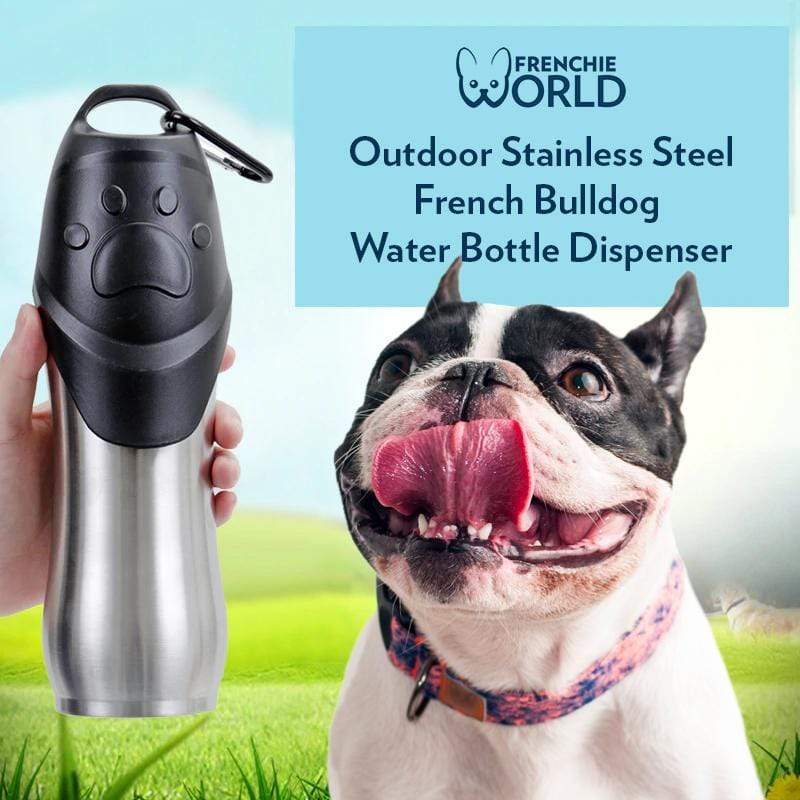 Frenchie World Shop Outdoor Stainless Steel French Bulldog Water Bottle