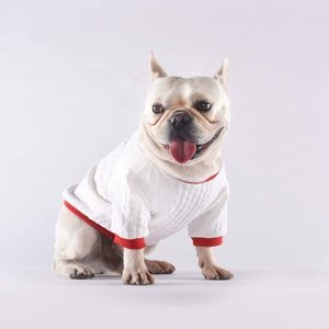 Frenchie World Shop Pet Dog Spring Clothes for Small Dogs Clothing Puppy French Bulldog Warm Sweater Pug Costume Yorkshire Roupa Para Cachorro S-XL