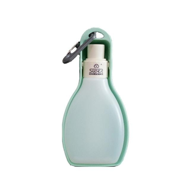 Portable travel water bottle