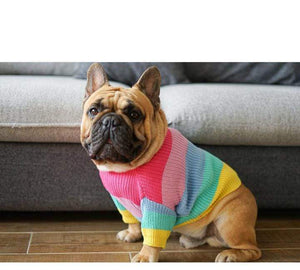 Frenchie World Shop Rainbow Knitted Jumper