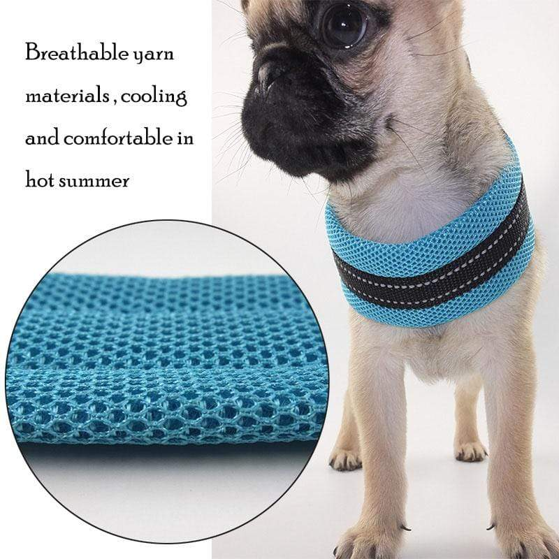 Frenchie World Shop Reflective Mesh Dog Harness