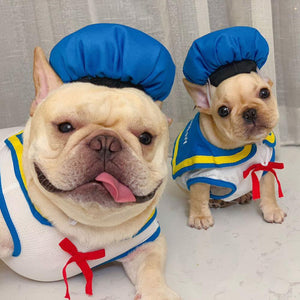 Frenchie World Shop Sailor French Bullog Costume