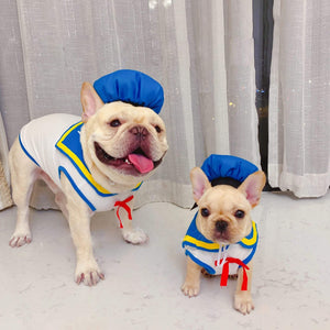 Frenchie World Shop clothes / S Sailor French Bullog Costume