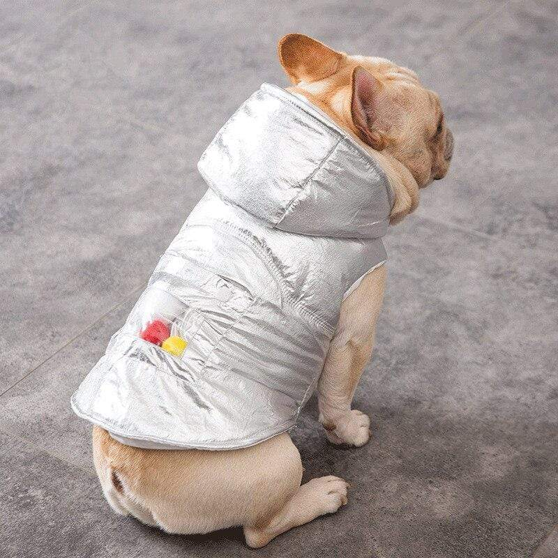 Frenchie World Shop Silver French Bulldog Coat