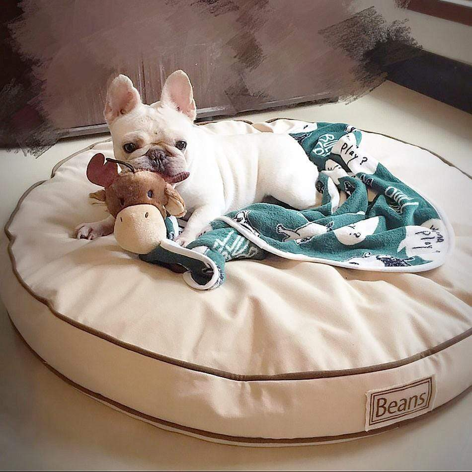 Frenchie World Shop Soft French Bulldog blanket