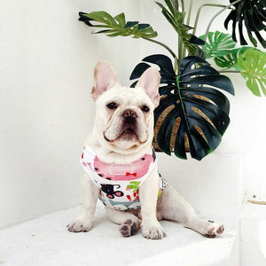 Frenchie World Shop White / L-4 Summer Aquarelle French Bulldog Vest