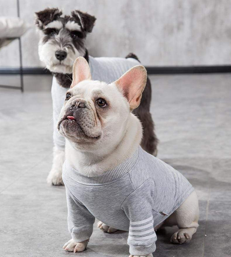 Frenchie World Shop Thick Dog Tank