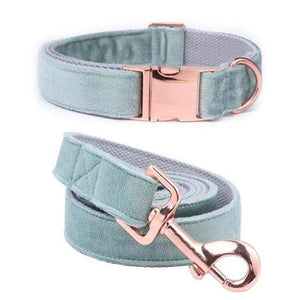 Frenchie World Shop collar and leash / XS Unique Style Paws Christmas Designer Blue Velvet Adjustable Dog Collars and Leash Gold Buckle