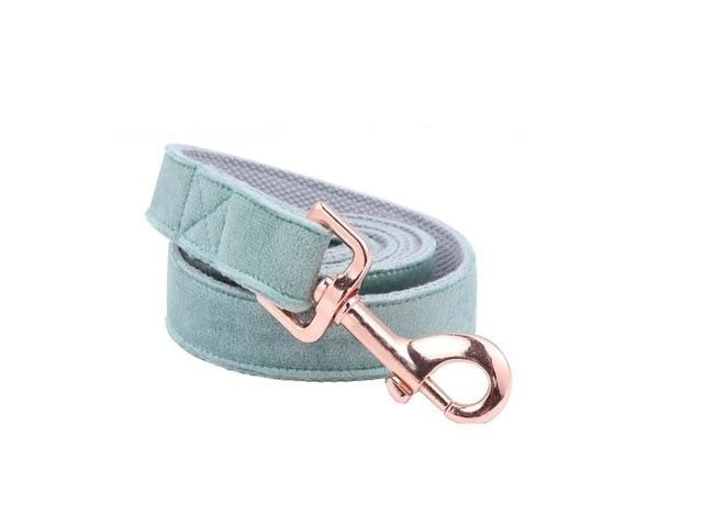 Frenchie World Shop leash / XS Unique Style Paws Christmas Designer Blue Velvet Adjustable Dog Collars and Leash Gold Buckle