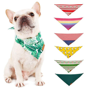 Frenchie World Shop Vibrant French Bulldog Bandanas
