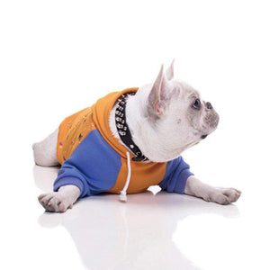 Frenchie World Shop Violet & Orange French Bulldog Hoodie