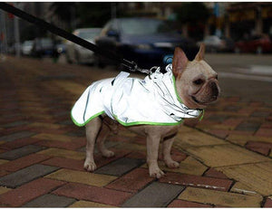 Frenchie World Shop Windbreaker Reflective French Bulldog Vest