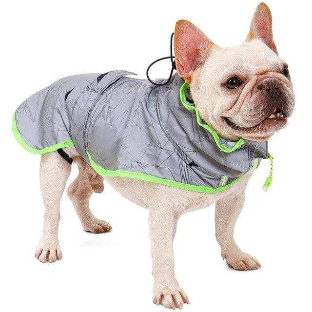 Frenchie World Shop Gray / L Windbreaker Reflective French Bulldog Vest