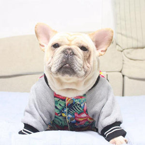 Frenchie World Shop Winter College Jacket