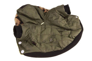Frenchie World Shop Winter Hooded Jacket