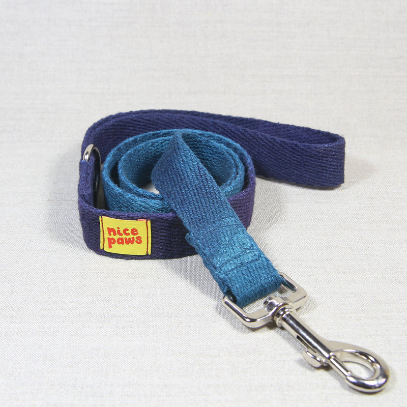 Hemp Leash - Teal/Purple