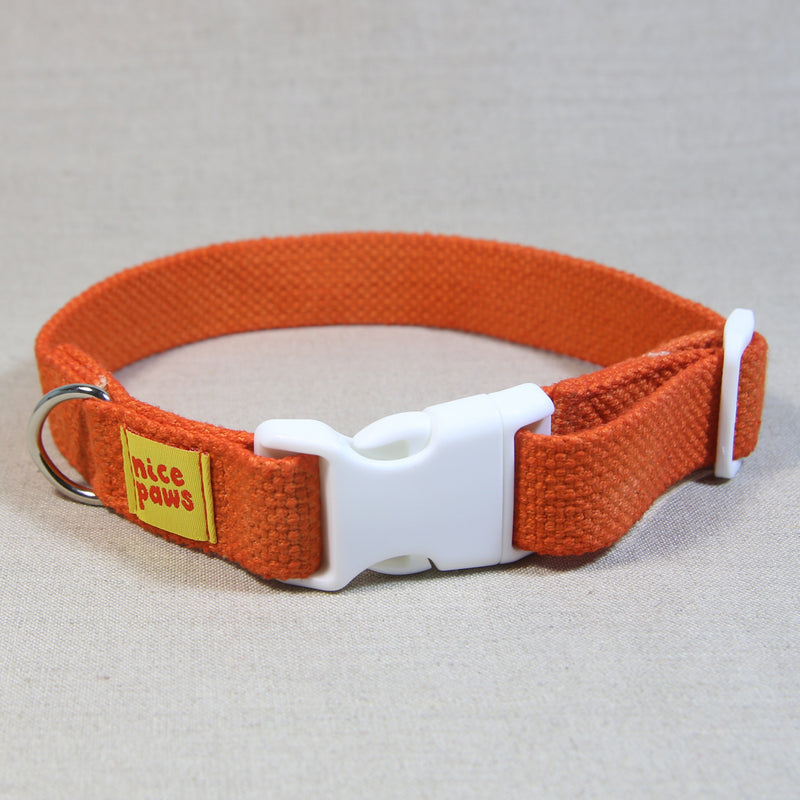 Cotton Collar - Orange/White