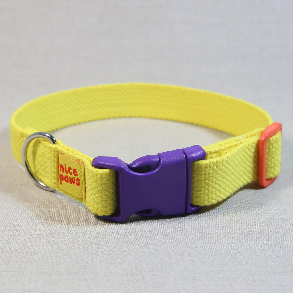 Cotton Collar - Yellow/Purple/Orange - (M)